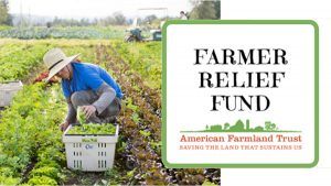 Hannaford Donates $250,000 to Support 250 Local Farms in New England and New York